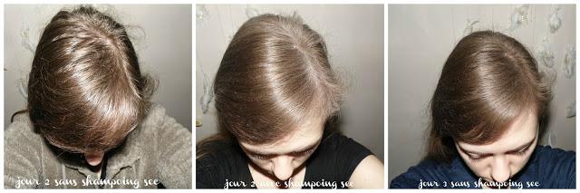 DIY : mon shampoing sec 100% naturel & gourmand !