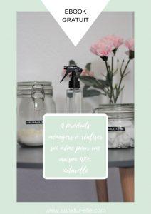 Ebook gratuit : 4 produits ménagers à réaliser soi même pour une maison 100% naturelle